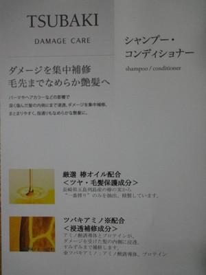 Dsc05347